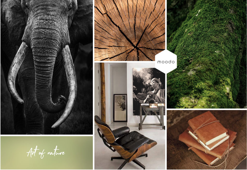 Moodboard interieurontwerp Art of nature